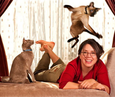 ORIENTAL SHORTHAIR AND SIAMESE TOOK TURNS LEAPING OVER REBECCA, THEIR HUMAN, DURING THIS LOCAL CAT SHOOT