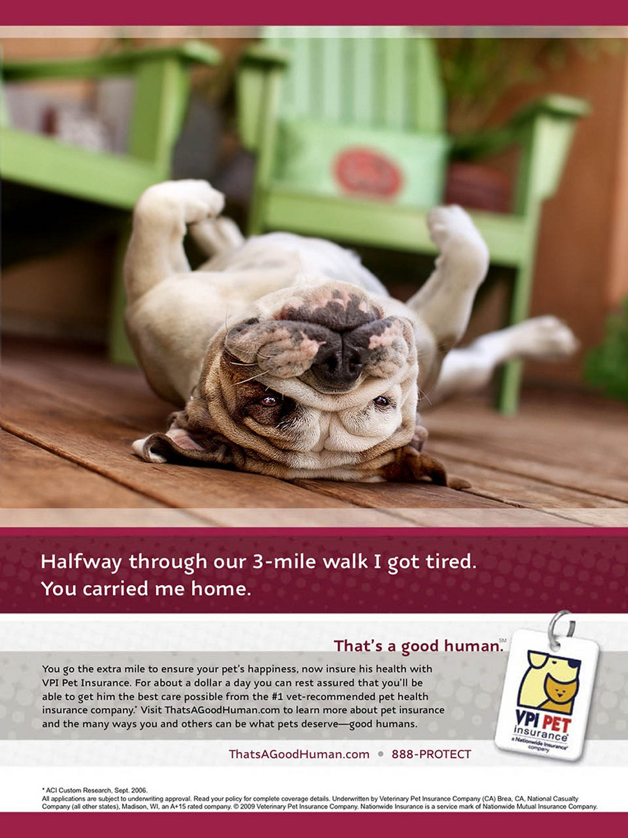 AD FEATURING PIGGY WAS IN MAGAZINES INCLUDING OPRAH, MARTHA STEWART LIVING & OTHERS...