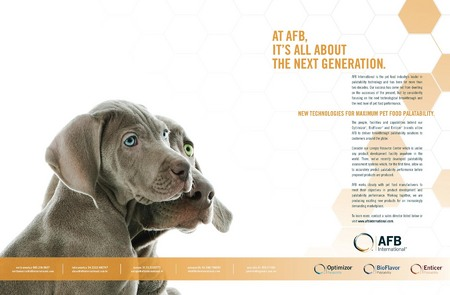 ALL THIS WIGGLY WEIMARANER FUN LEAD TO A VERY NICE AD FOR AFB INTERNATIONAL!