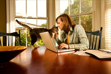 WORKING FROM HOME, FOR AFB INTERNATIONAL