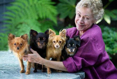 CAROL WITH HER RARE RUSSIAN TOY TERRIERS, HER BABIES...